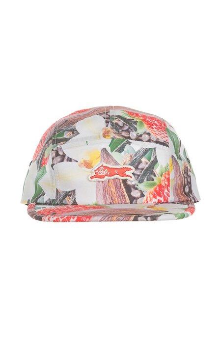 IceCream Berry Panel Hat