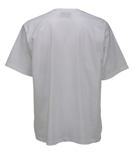 THE SILTED COMPANY Palm tshirt - white
