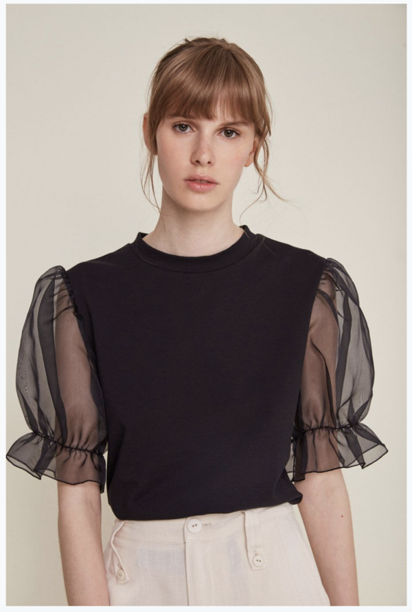 Rita Row Sheer Sleeve Shirt