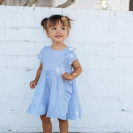 kids Pink Chicken Cher Dress - Blue Seersucker