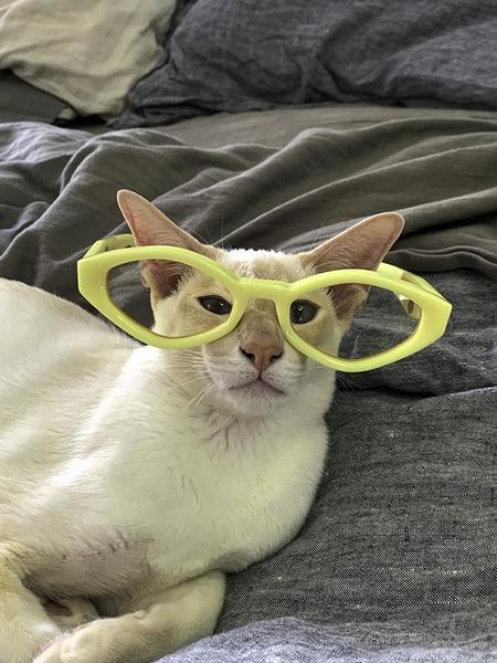Unisex Vada Siren Eyewear - Butter Yellow/Candy Lemon Lens