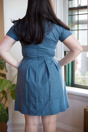 Birds of North America Accentor Dress - Blue