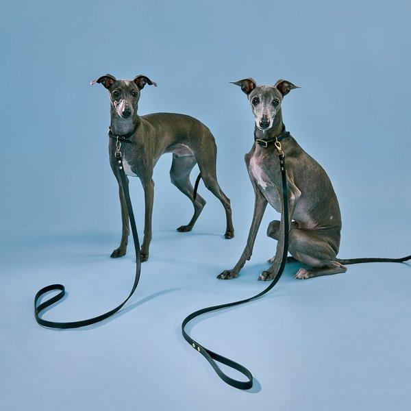 Partoem INU leash