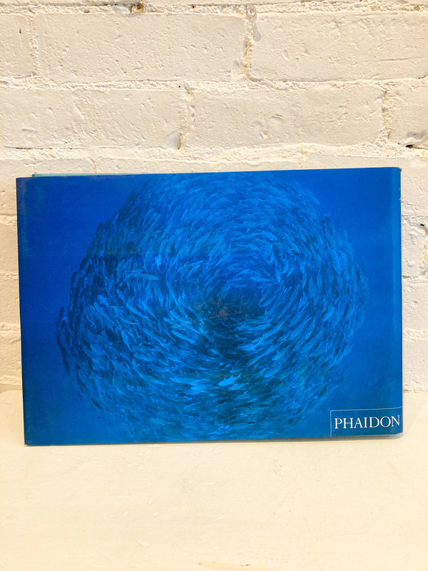 """Phaidon """"Water Light Time"""" by David Doubilet Book"""