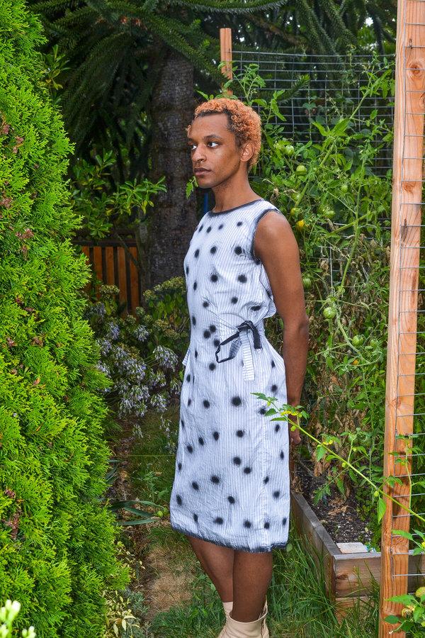 Alexa Stark polka dots on stripes dress