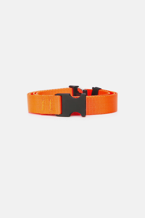 The Celect Clip Belt - Orange