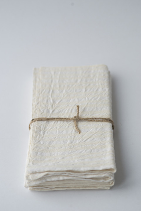 Heather Taylor Home Woven Napkins in Blanc (Set of Four)