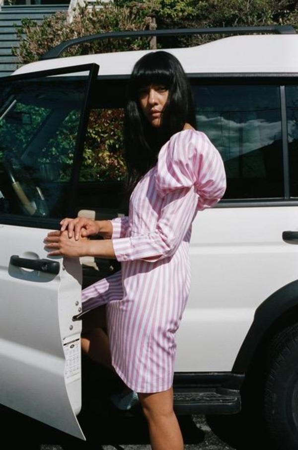 Mr. Larkin Penelope Dress - Pink Stripe