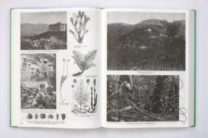 Batia Suter Revised Edition Parallel Encyclopedia 2