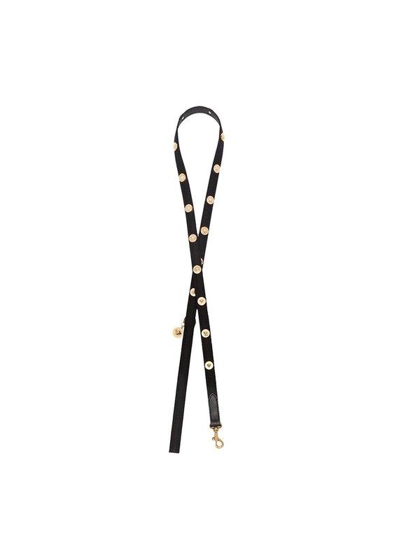 Medusa Stud Collar And Leash Set