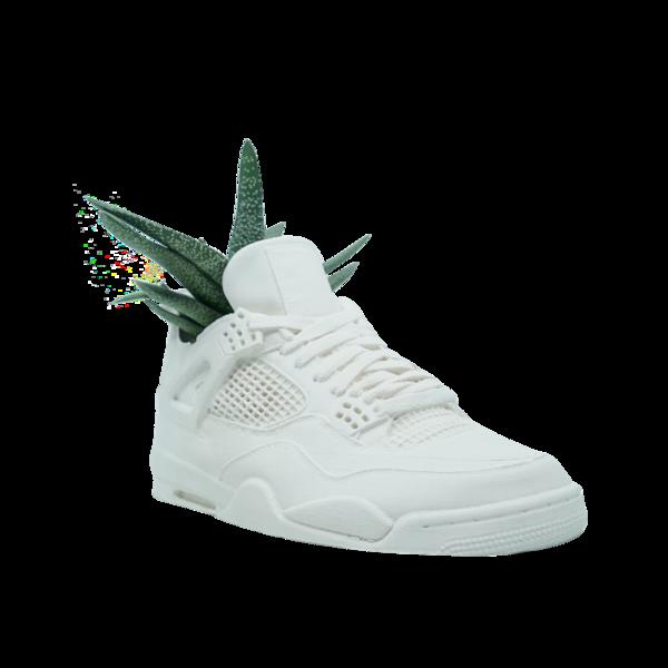 Jordan 4 Planter (White Cement, Single)