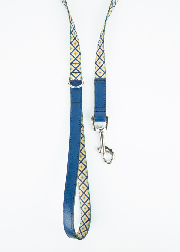 Ware of the Dog Square Webbing Leash