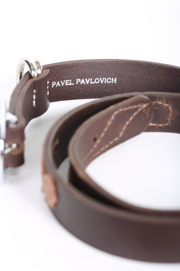 Pavel Pavlovich Cactus Belt