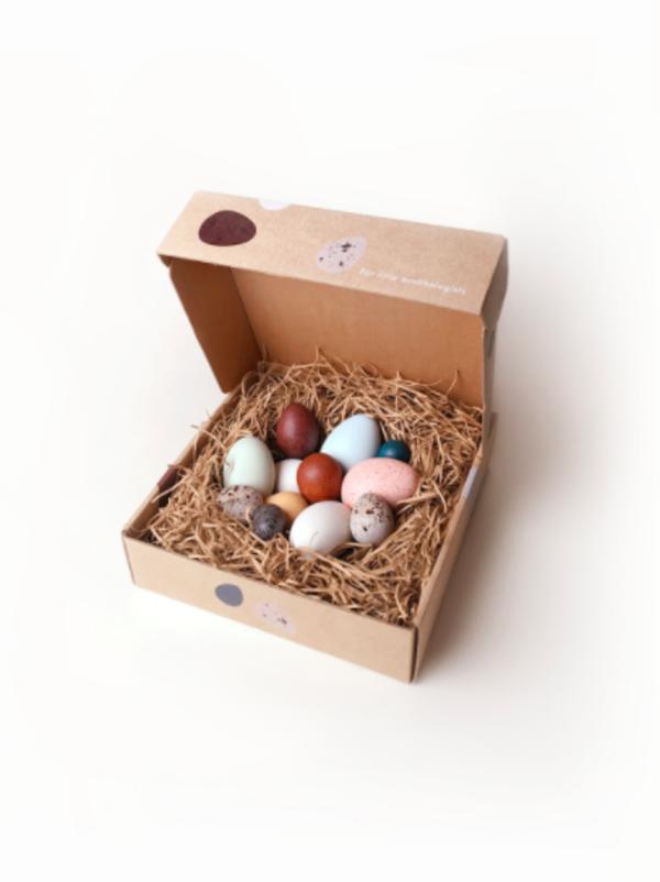 Kids MOON PICNIC A Dozen Bird Eggs in a Box
