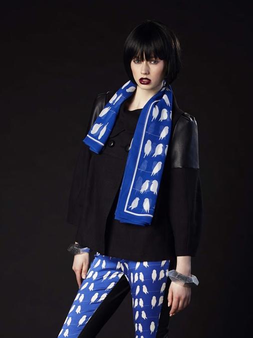 Anu Raina Bluebirds scarf