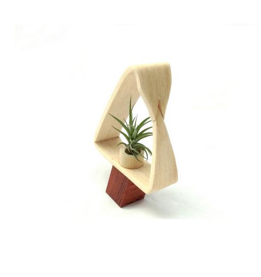ART OF PLANTS - V TREE