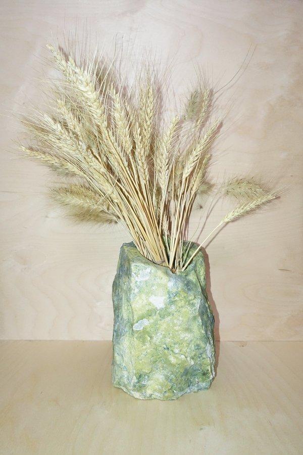 Please, Plants Serpentine Vase
