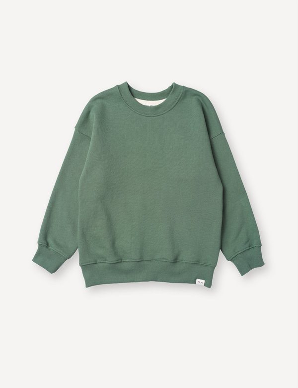 Kids Petits Vilains Emil Crew Sweatshirt - Clover