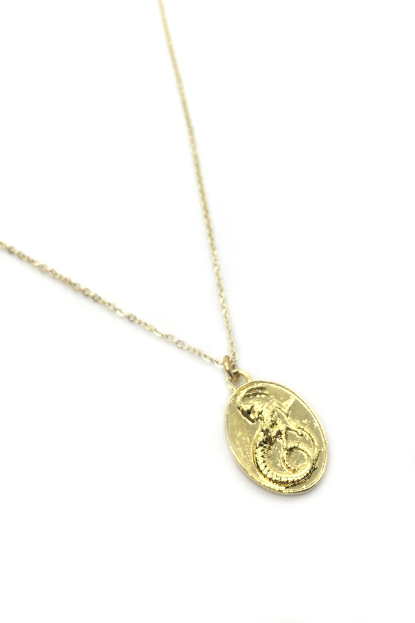 c p capricorn necklace pendant g products i n