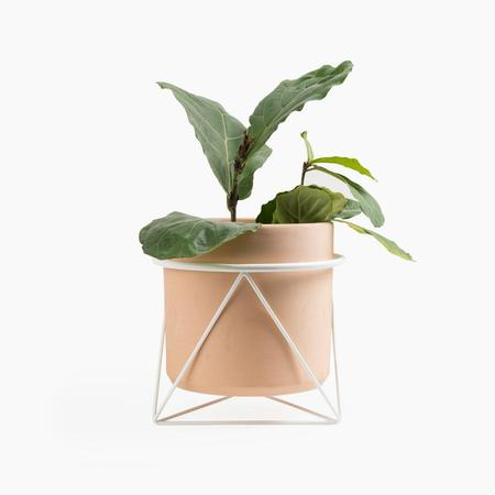 Eric Trine Octahedron Ring Planter - White