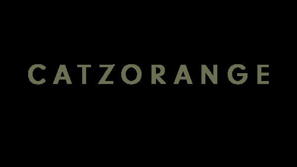 Catzorange-brooklyn-ny-logo-1496082478