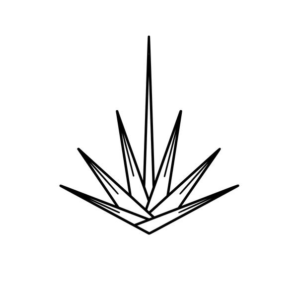 Yucca-denver-co-logo-1556806988