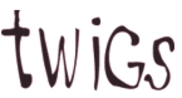 Twigs-lenox-ma-logo-1526674579