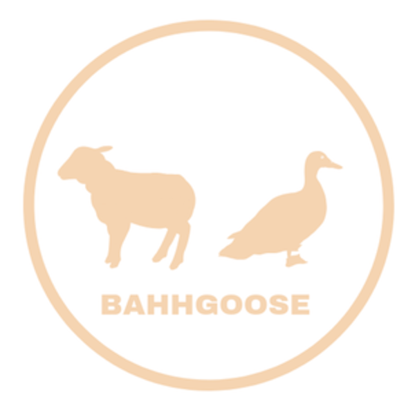 Bahhgoose-campbell-river-bc-logo-1583489561