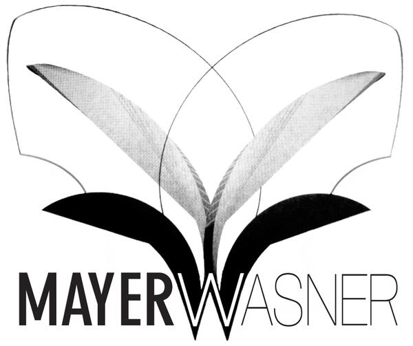 Mayerwasner-narrowsburg-ny-logo-1523029160